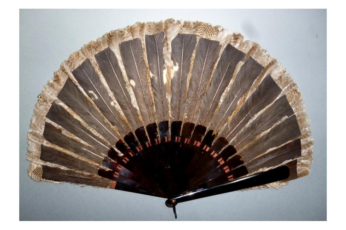 Partridge, hunting fan, circa 1895-1900