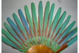 Ara, éventail en plumes, vers 1910